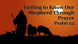Getting to Know our Shepherd - title